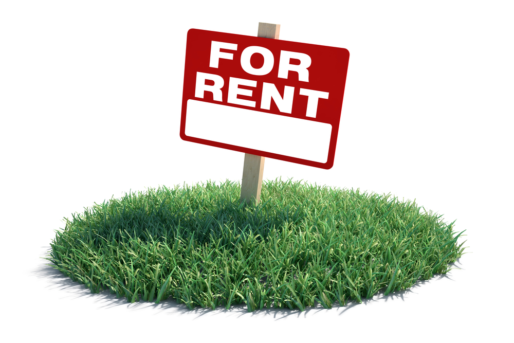 For rent sign stuck in a patch of emerald green grass