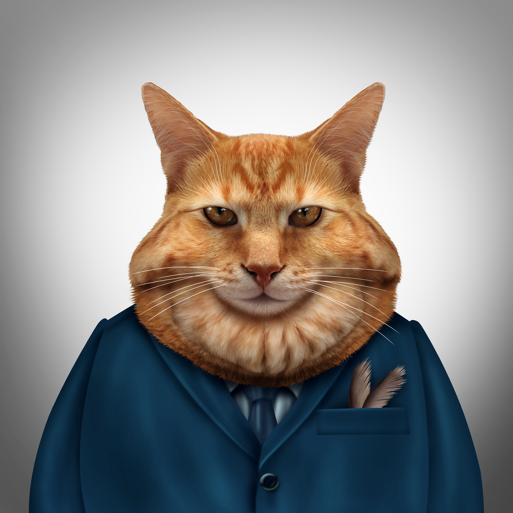 executive fat cat ginger tom